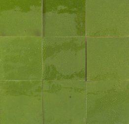 47-vert-ptillant